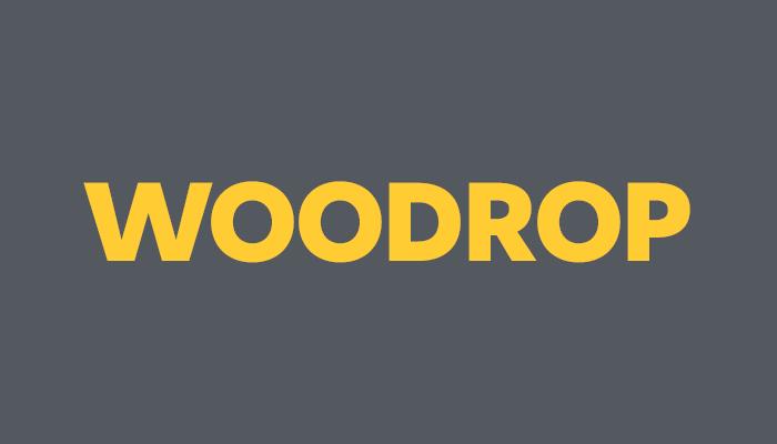 Curso sobre Dropshipping con WooCommerce: WOODROP