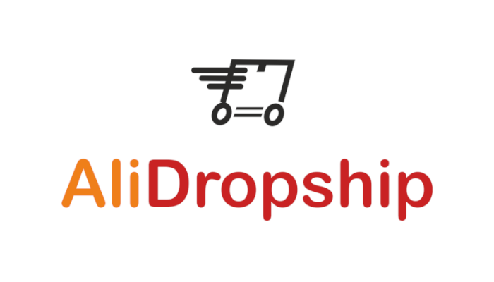 El mejor plugin para dropshipping en WordPress: Alidropship