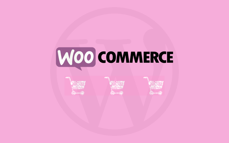 100% recomendado para WordPress y WooCommerce